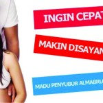 Tips Alami Penyubur Kandungan |Distributor AL Mabruroh
