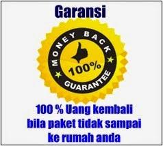 garansi 1
