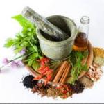 Makanan Tradisional Cepat Hamil |Distributor AL Mabruroh